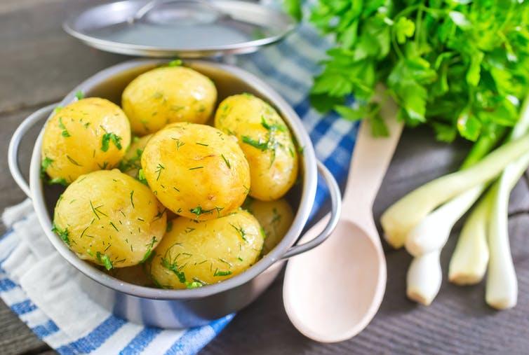 Un bol de pommes de terre bouillies avec de l'aneth frais sur le dessus